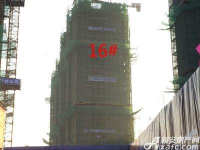秀山信达城16#工程进度(2017.1.14)