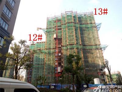 公园道壹号12#、13#楼项目进度(2017.1.20)