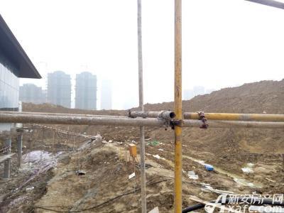 置地滨湖双玺工程进度