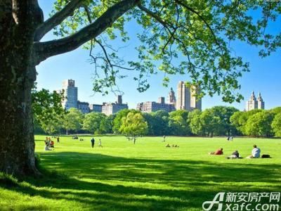 碧桂园置地中央公园效果图