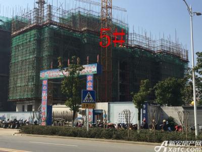 华源七星城5#楼2月项目进度图(2017.2.24)