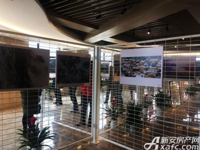 新安印象全市干部职工摄影书画展现场(20170224)