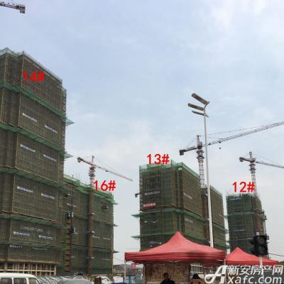 秀山信达城12#13#14#16#工程进展(2017.3.7)