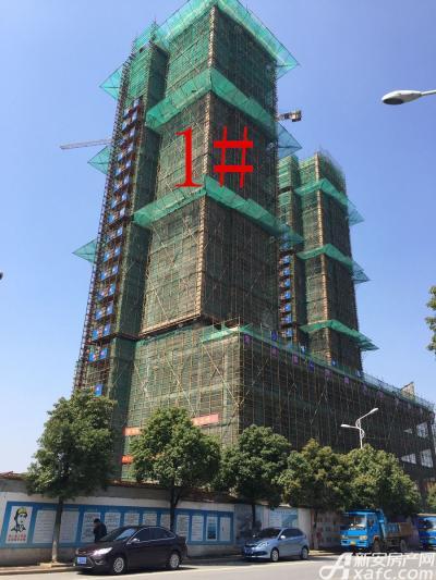 银湖义安学府1#楼3月项目进度图(2017.3.15)