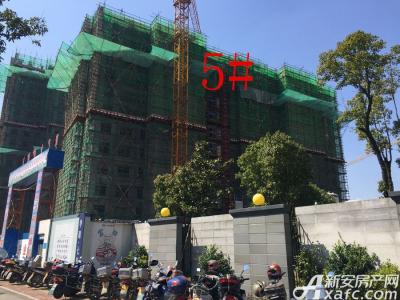 华源七星城5#楼3月进度图(2017.3.16)