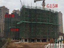 高速铜都天地G15#—G17#楼项目进度(2017.3.20)