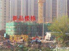 恒大绿洲新品楼栋项目进度(2017.3.27)