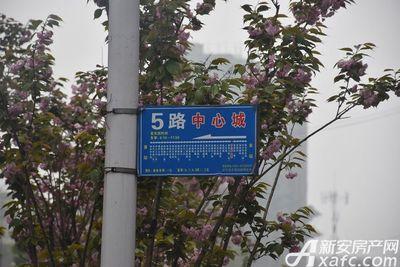 庐江中心城中心城公交线路
