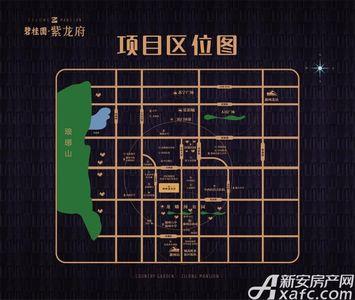 碧桂园紫龙府交通图