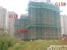 高速铜都天地G15#—G17#楼项目进度(2017.4.14)