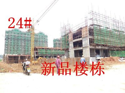 天景庄园24#楼项目进度(2017.4.17)