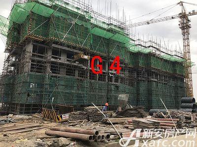 新安印象2017.4.19 G4进度