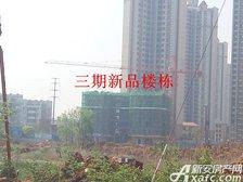 恒大绿洲新品楼栋项目进度(2017.4.24)