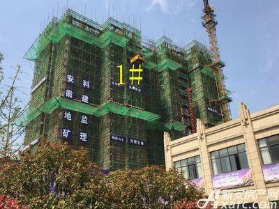 亿景海棠湾工程进度