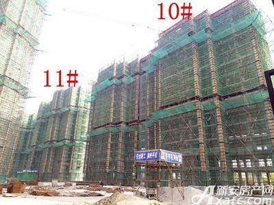 公园道壹号10#、11#楼项目进度(2017.4.25)