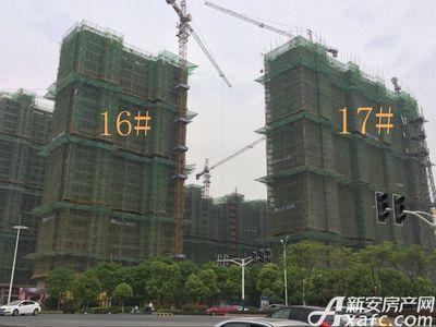 秀山信达城16#17#工程进度(2017.4.25)