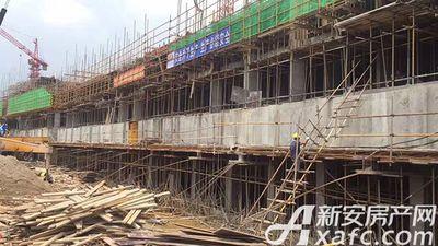 恒大滨江左岸2017.5.17 恒大项目绿网搭建