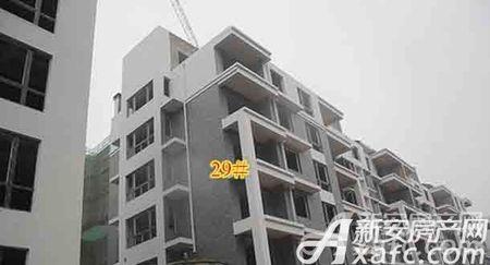 国鑫西城锦湖工程进度
