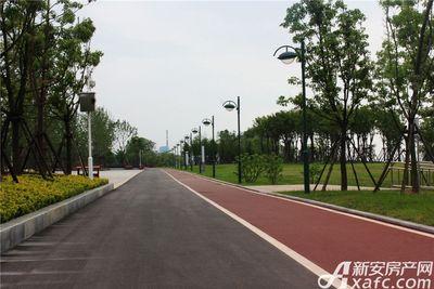 滨江壹号院绿道
