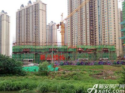 恒大绿洲新品楼栋项目进度(2017.5.24)