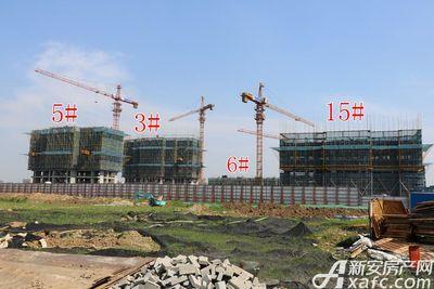 皖新翡翠庄园在建部分高层进度(2017.5)