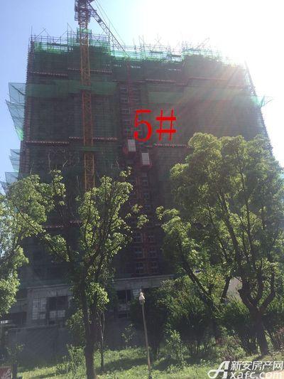 华源七星城5#楼5月进度图(2016.5.10)