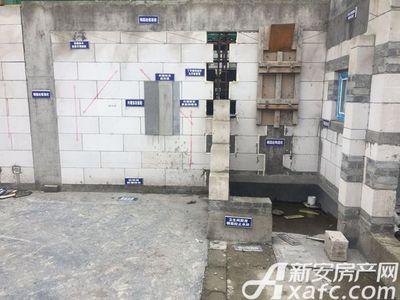 梅林国际建筑材料示范区(20170607)