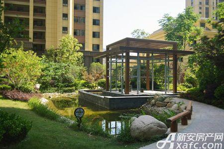 万成·哈佛玫瑰园实景图