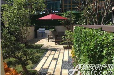 伟星·壹号院售楼部实景图(2017.5.20)
