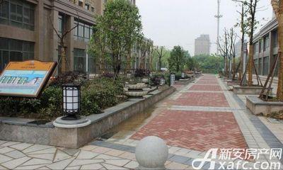 长江公园国际小区实景图