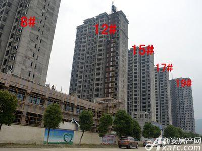北城秀里8#、12#、15#、17#、19#工程进度(2017.6.14)