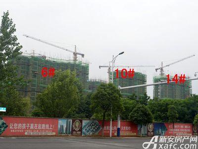 大地凤凰城6#、10#、14#工程进度(2017.6.14)