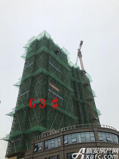 新安印象G3# 建至30层(2017.6.15)