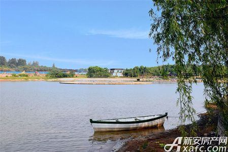 鹭山湖实景图
