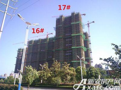 秀山信达城16#、17#工程进度(2017.6.23)