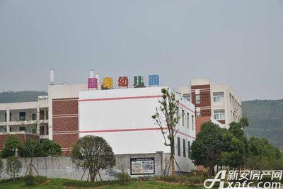 恒大悦龙台项目周边幼儿园(2017.6.27)