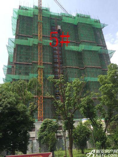 华源七星城5#楼6月进度(2017.6.27)