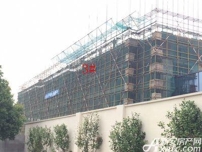 伟星·壹号院3#工程进度(2017.6.28)