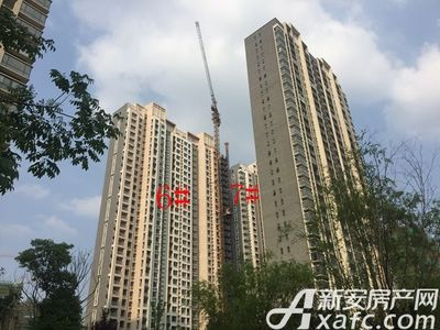 荣盛西湖观邸6#、7#工程进度(2017-6)