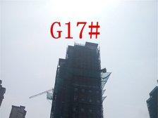高速铜都天地G17#楼进度(2017.6.28)