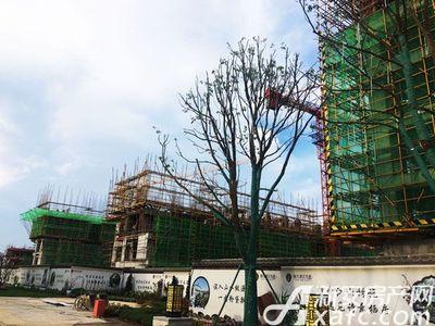 恒大滨江左岸7月工程进度,入口景观(2017.7.13)