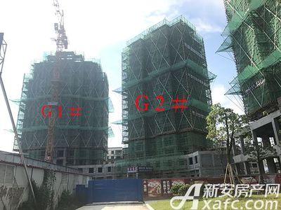 新安印象【2017.7.14】G1#G2#项目进度 均已封顶