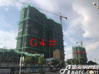 新安印象【2017.7.14】G4# G6#工程进度
