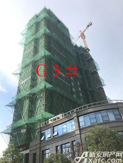 新安印象【2017.7.14】G3#工程进度 即将封顶