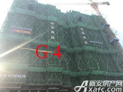 新安印象【2017.7.14】G4项目进度 已建至地上20余层
