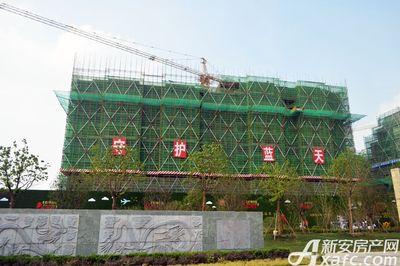 万成·哈佛玫瑰园二期高层16#工程进度(2017.7)