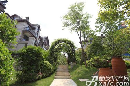 三盛颐景御园实景图