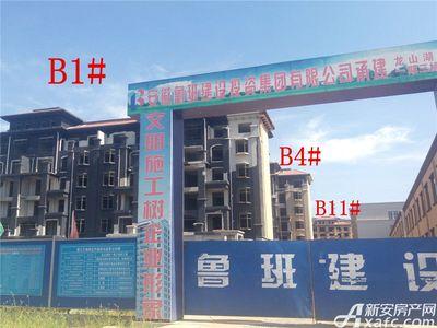 地矿龙山湖苑B1#、B4#、B11#项目进度(2017.7.20)