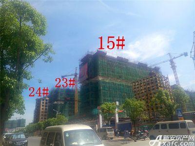 天景庄园15#、23#、24#项目进度(2017.7.21)