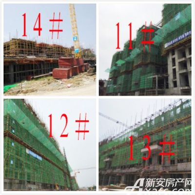 恒大滨江左岸8月施工进度(2017.8.8)11#9层顶模板安装,12#7层墙柱钢筋绑扎,13#6层内架搭设,14#二层内架搭设